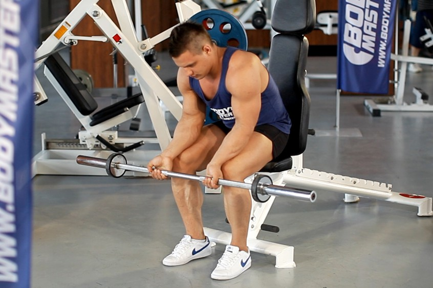 Exercise Seated Palm-Up Barbell Wrist Curl