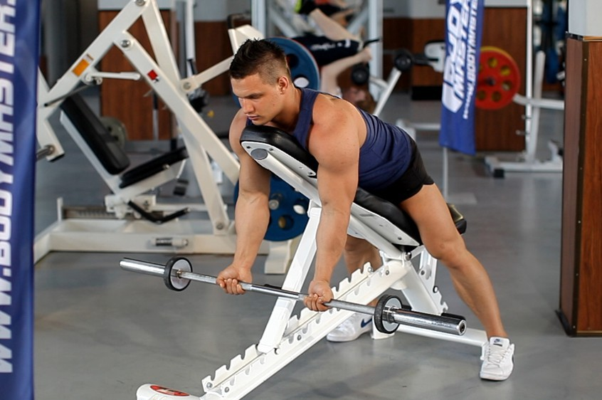 Exercise Barbell Curls Lying Against An Incline