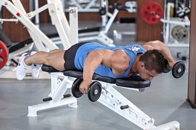 Photo of Lying Rear Delt Raise  exercise