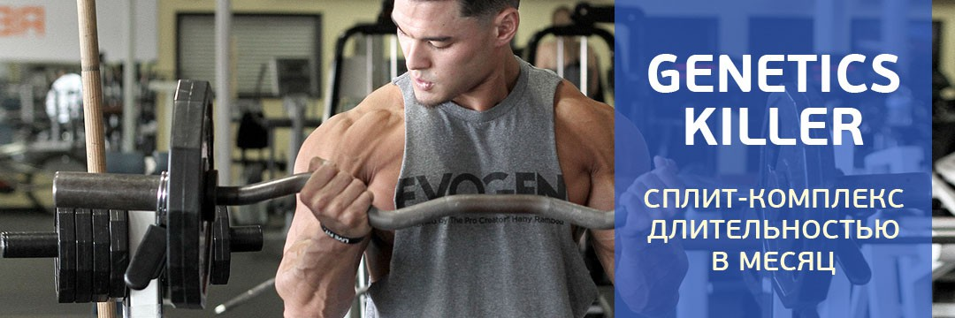 Mass Gain » For Ectomorphs: 2-day split