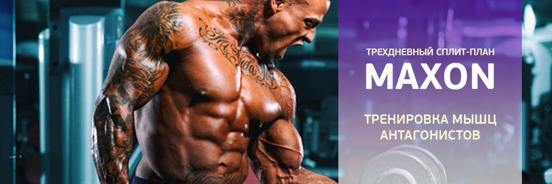Mass Gain » Program for training to increase muscle volume