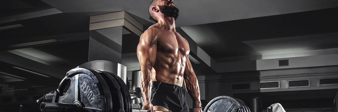 Mass Gain » Программа тренировок для набора мышечной массы