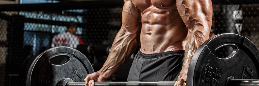 Mass Gain » Программа тренировок для увеличения мышц рук
