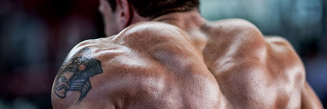 Fat Burning » Программа тренировок на плечи в домашних условиях (штанга + гантели)