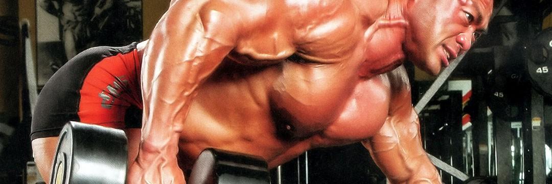 Mass Gain » 6-тидневный сплит для наращивания мышечной массы