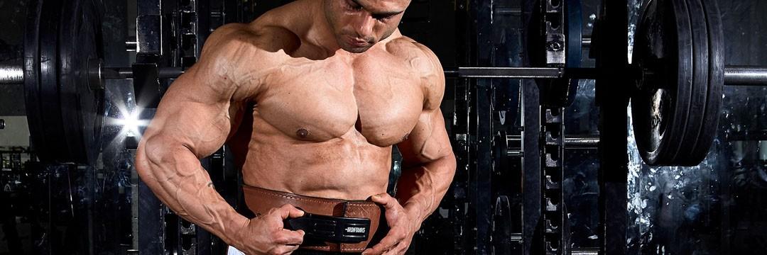 Mass Gain » Сплит на 5 дней в неделю для набора мышечной массы