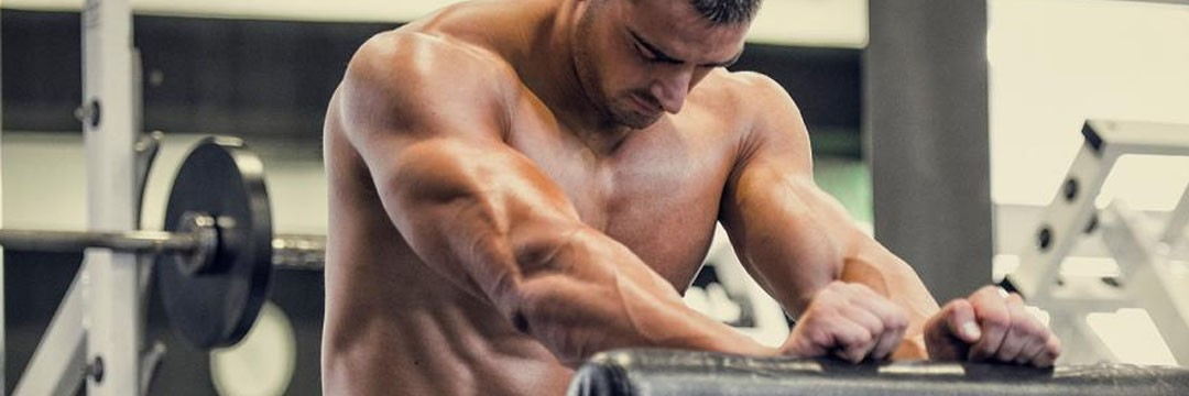 Mass Gain » BASIS: your bodybuilding master plan