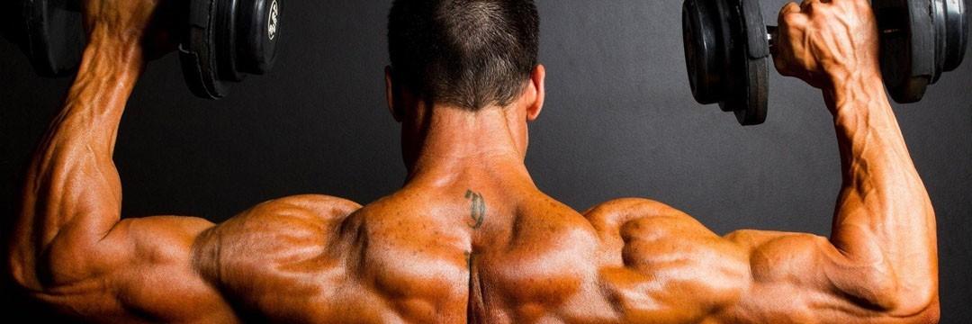 Mass Gain » KOMBIX: программа-специализация на грудь и спину