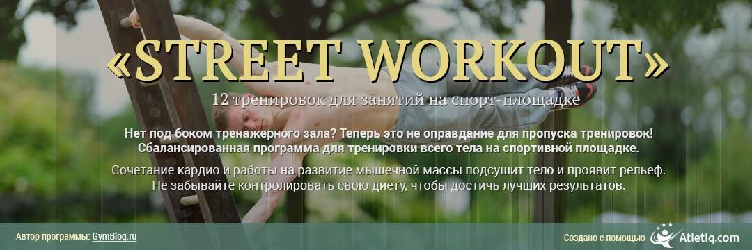 Поддержание формы » Street Workout (I уровень)