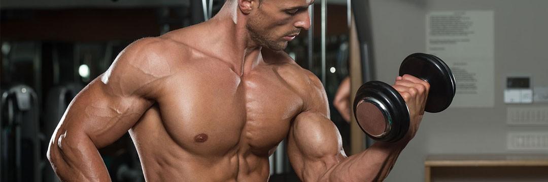 Набор мышечной массы » Тренинг безнадежного эктоморфа
