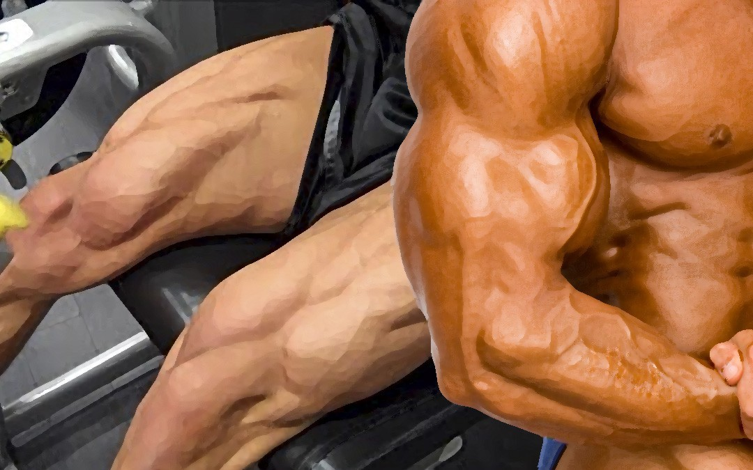 Mass Gain » Arms and Legs (mass + strength)
