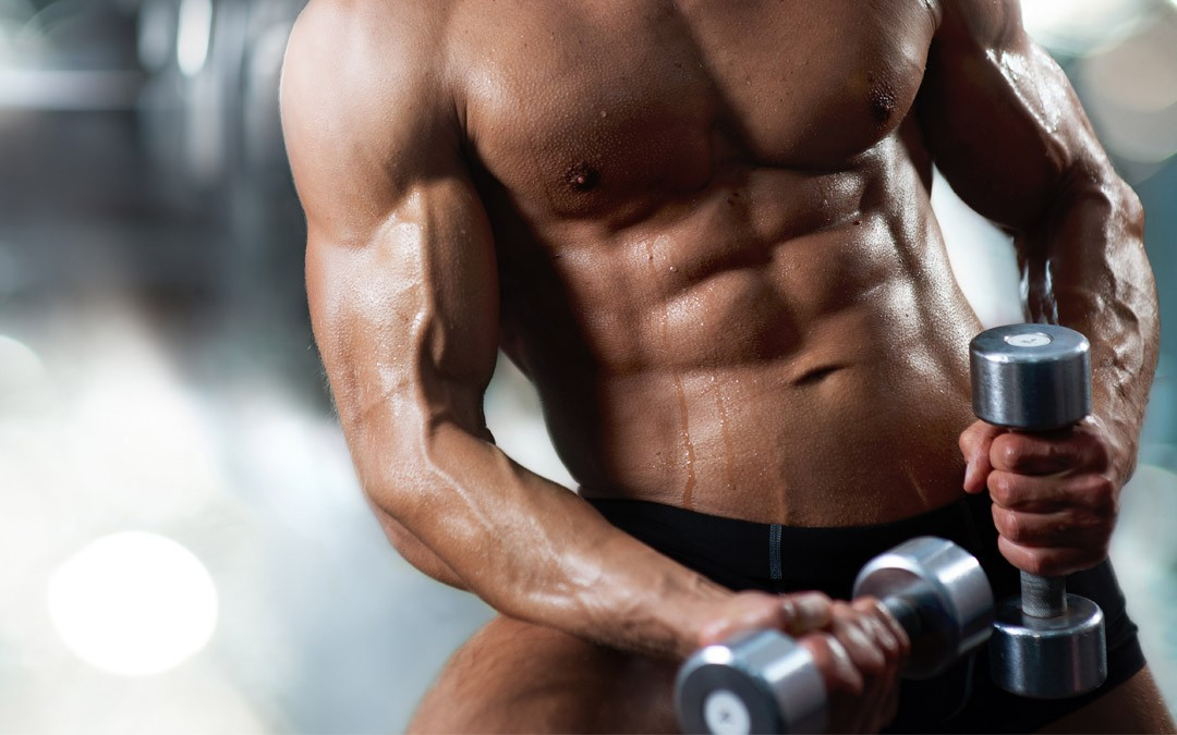 Maintenance » 2 workouts per week (maintaining physique)