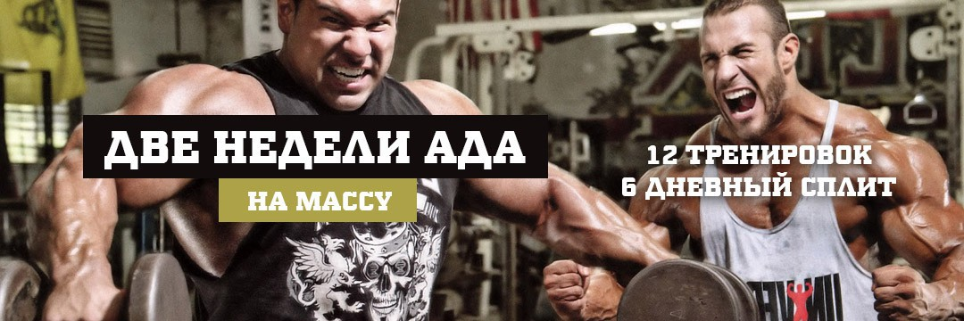 Двухнедельная программа тренировок до изнеможения для максимального мышечного роста