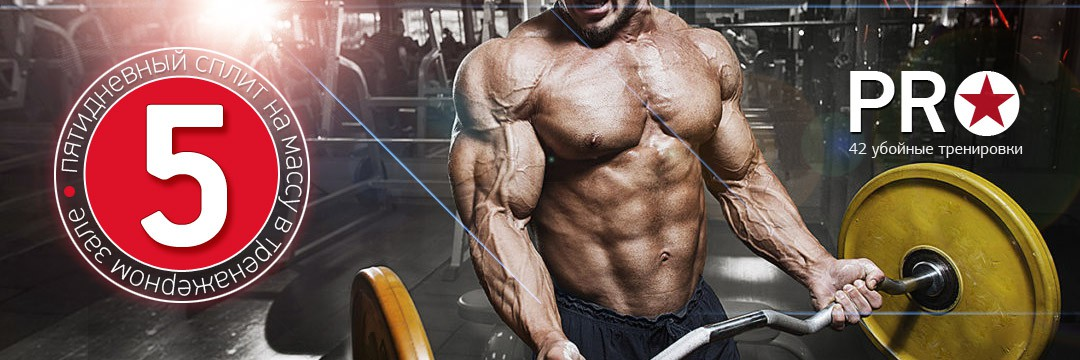 Mass Gain » 5 day PRO-split for Mass Gain