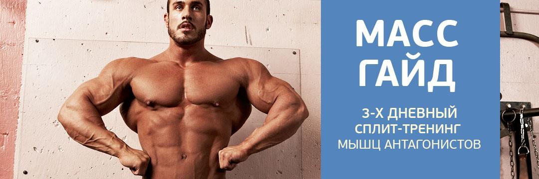 Набор мышечной массы » Масс-гайд — с учетом факторов роста